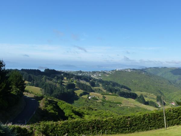 Ausblick auf Wellington von unserer Unterkunft
