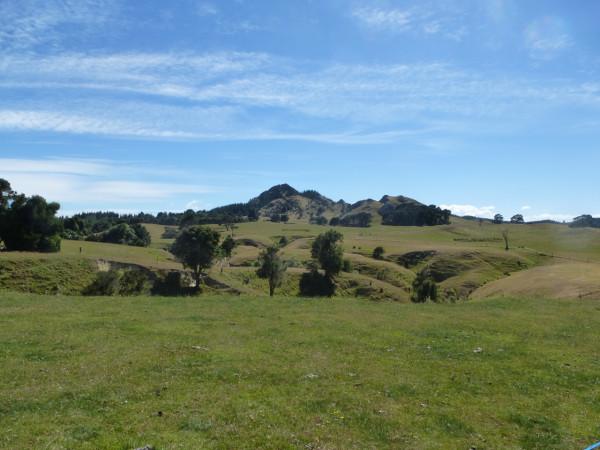 Farmland Orienteering